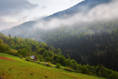 Spring landscape in the Carpathian mountains stock photos
