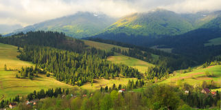 Spring landscape in the Carpathian mountains Royalty Free Stock Images