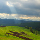 Spring landscape in the Carpathian mountains Stock Image