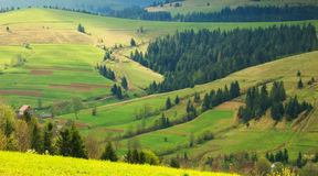 Spring landscape in the Carpathian mountains Royalty Free Stock Image