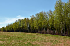 Spring landscape in Central Russia Stock Photography