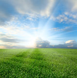 Spring landscape and cloudy sky Stock Photography