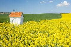 Spring landscape with colored fields and little chapel Stock Photos