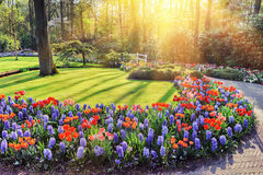 Spring landscape with colorful flowers. At sunny day stock photo