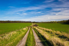 Spring landscape. Country road, green fields and blue sky Royalty Free Stock Image