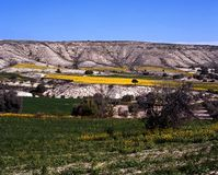 Spring landscape, Cyprus. Stock Photography