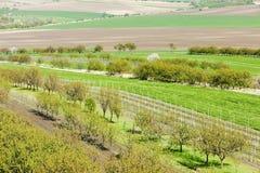 Spring landscape, Czech Republic Stock Image