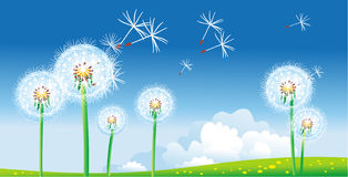 Spring landscape with dandelions. Vector illustration Royalty Free Stock Photography
