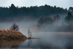 Spring landscape at dawn of  lake in fog Stock Photography