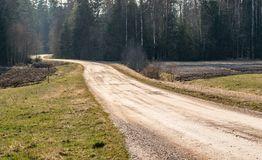 Spring landscape. Dirt road leading to the forest royalty free stock photo