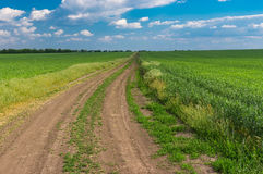 Spring landscape with an earth road among agricultural fields near Dnipro city in central Ukraine Royalty Free Stock Photo