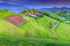 Spring landscape and farmland,Holbav,Transylvania,Romania,Europe stock photography