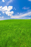 Spring landscape, field and blue sky Stock Photos