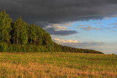 Spring landscape, field edge, forest. Looming clouds Royalty Free Stock Image
