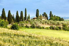 Spring landscape of fields Tuscany Stock Image