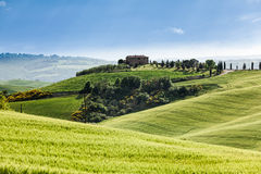 Spring landscape of fields Tuscany, Italy Royalty Free Stock Photography