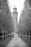 Spring landscape in Finland, Helsinki. Alley with birch trees and a chapel for a walking Royalty Free Stock Photo
