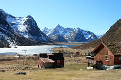 Spring Landscape of Flakstad  Royalty Free Stock Photo
