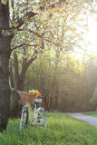 Spring landscape with floral bike Royalty Free Stock Photo