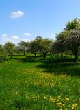Spring landscape germany mountains fields forest Royalty Free Stock Photography