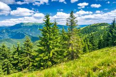 Spring landscape with grassy meadows and mountains royalty free stock photos