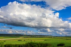 Spring landscape, green fields of wheat and clouds over blue sky. Sunny day royalty free stock photo