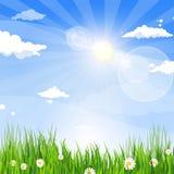 Spring Landscape Green Grass Blue Sky Land Banner. Flat Vector Illustration Stock Photo