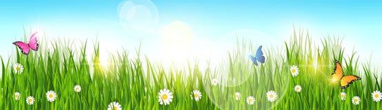 Spring Landscape Green Grass Blue Sky Land Banner. Flat Vector Illustration Stock Photos