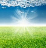 Spring landscape, green grass under the rays of the rising sun Royalty Free Stock Photography