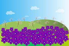 The spring landscape. Green hills, purple violets with a yellow center, blooming garden, trees with brown trunks and pink flowers, Royalty Free Stock Photos