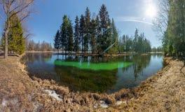 Spring landscape. Green lake Stock Photo