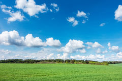 Spring landscape with green meadow, forest and blue sky Royalty Free Stock Photography