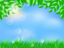 Spring landscape, green tree leaves and grass. Spring landscape, blue sky, green tree leaves and grass, sunny day, vector illustration stock illustration