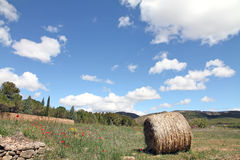 Spring landscape,  Gudar mountains, Teruel, Spa Royalty Free Stock Photo