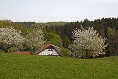 Spring landscape with half-timbered house Royalty Free Stock Photography
