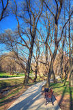 Spring landscape HDR Royalty Free Stock Images