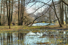 Spring landscape. HDR photo Stock Images