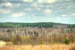 Spring landscape HDR Stock Photography