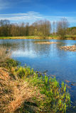 Spring landscape HDR Royalty Free Stock Photos