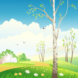 Spring landscape. Illustration of a spring landscape with a birch tree Stock Image