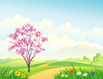 Spring landscape. Illustration of a spring landscape with a blooming tree Stock Photo