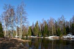 Spring landscape Inzer River South Ural Stock Photography
