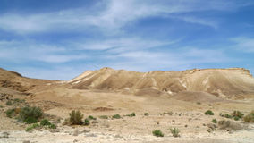 Spring in Judea desert. Royalty Free Stock Photography