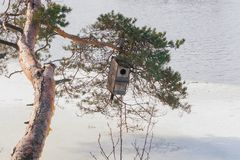 Spring landscape of Kymijoki river waters in ice and nesting box on a tree, Finland, Kymenlaakso, Kouvola.  royalty free stock photo