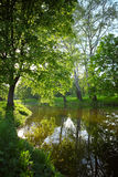 Spring landscape with lake Stock Photography