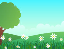 Spring landscape with lush green environment and white flowers Royalty Free Stock Photos