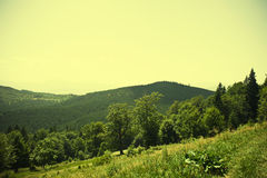 Spring landscape in mountain. Stock Photography