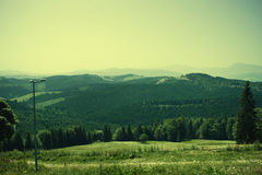 Spring landscape in mountain. Stock Photo