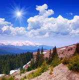Spring landscape in the mountains Royalty Free Stock Image
