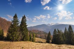 Spring landscape in the mountains Royalty Free Stock Photos